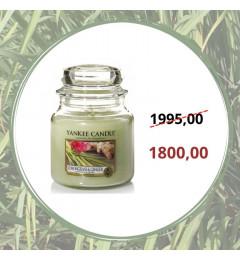 Mirisna sveća u tegli M - Lemongrass Ginger (limun, limunska trava, đumbir)