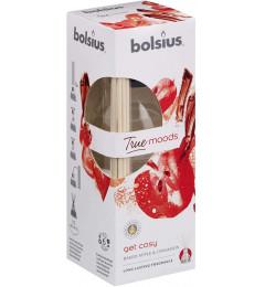 Bolsius mirisni difuzor sa štapićima 45ml - Get Cosy True Moods (cimet i pečene jabuke)