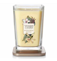 Sweet Nectar Blossom Elevation L - ljiljan, kokos i vanila