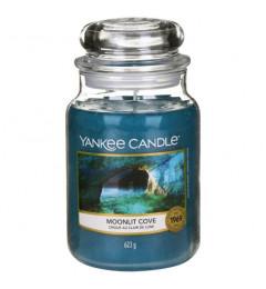 Mirisna sveća u tegli L - Moonlit Cove (citrus, đumbir, eukaliptus, kedar)